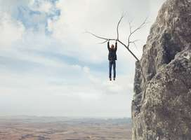 Man holds onto thin branch suspended from cliff side